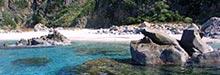 traghetti Pantelleria